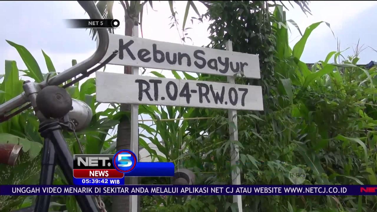 Warga Surabaya Membuat Taman Toga Di Lahan Sempit Net5
