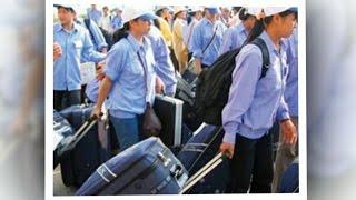 Tin Tức 24h Mới Nhất: Đình chỉ 3 doanh nghiệp xuất khẩu lao động