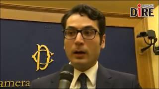 DIRE intervista Castorina su Generazione Italia
