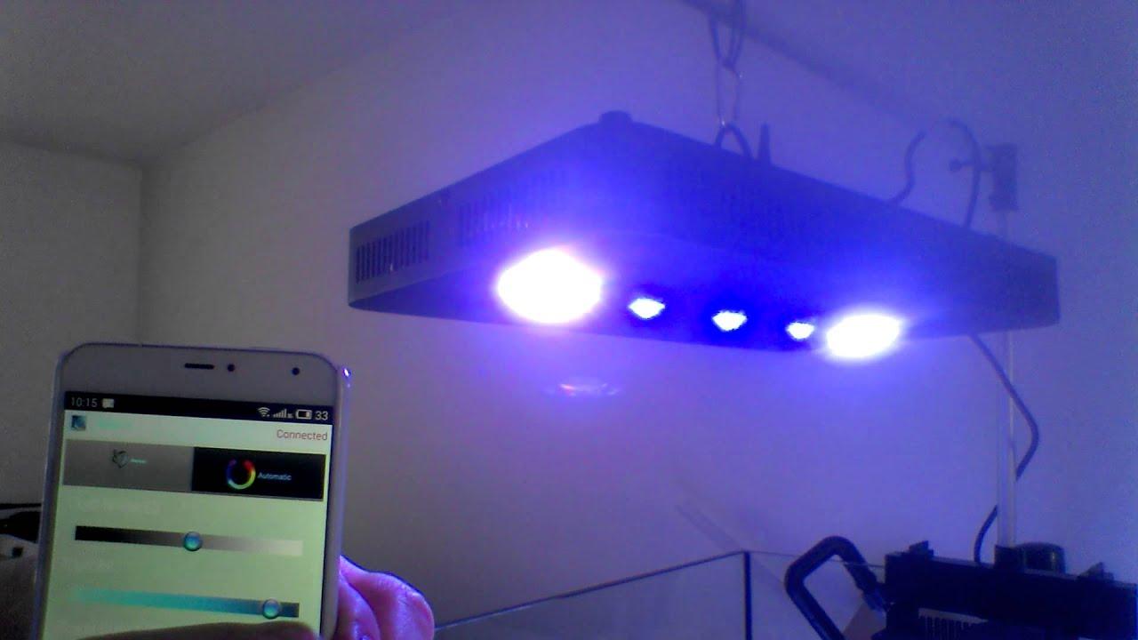 Plafoniere Led Wifi : Plafoniere lampade da soffitto di lampenwelt u arredamento casa