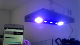 rampe led 169w wifi aliexpress