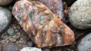 Oregon Only Stones: RockHounding Opal Jasper Agate 2019