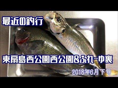 最近の釣行 東扇島西公園&ふれーゆ裏