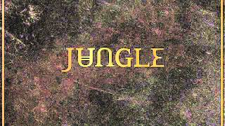 JUNGLE - ACCELERATE