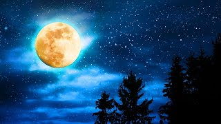 Deep Sleep Music, Sleep Meditation, Relaxing Music, Lucid Dreams, Study Music, Sleep Music, ☯2026
