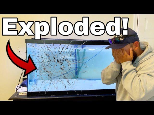 MY AQUARIUM FISH TANK EXPLODED! *RIP*