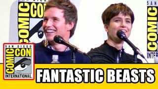 fantastic beasts and where to find them comic con panel highlights eddie redmayne ezra miller