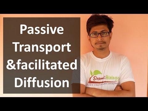 Passive transport | membrane transport lecture