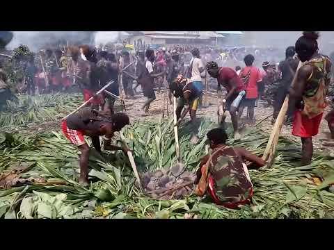 hqdefault - Tradisi Bakar Batu Bentuk Toleransi Masyarakat Papua