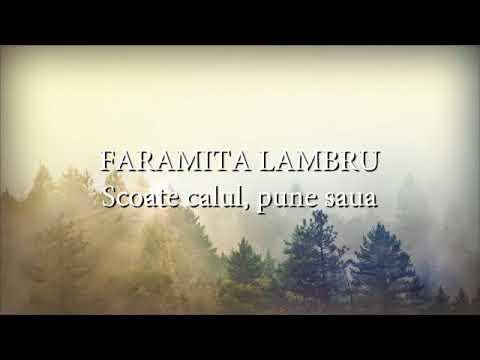 Faramita Lambru, Orchestra Constantin Mirea - Scoate calul, pune saua (versuri, lyrics, karaoke)