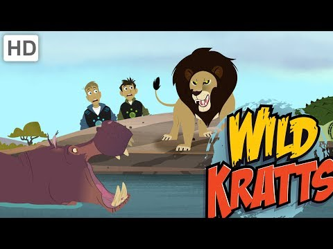 wild-kratts---top-african-wildlife