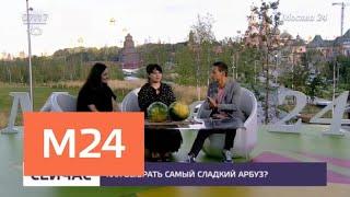 как выбрать самый сладкий арбуз - Москва 24