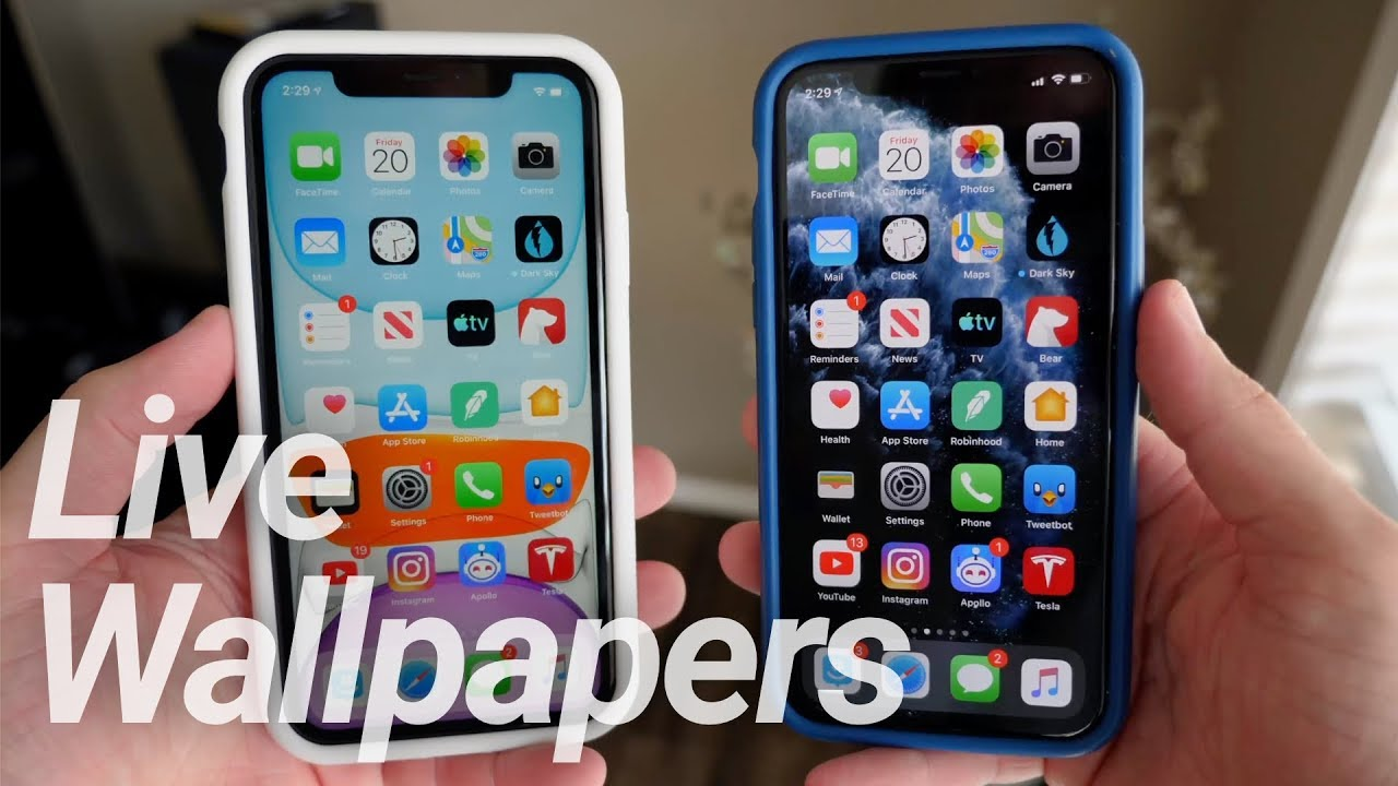 Iphone 11 11 Pro New Live Wallpapers Youtube