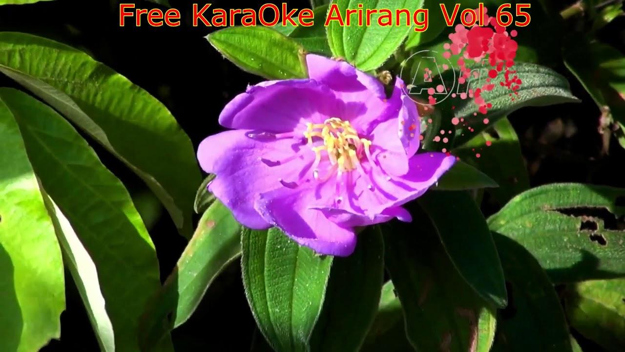 hoang hoa      Mã Karaoke Arirang 5 số: 62071