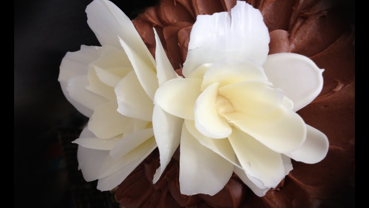 How To Make A Chocolate Flower Rose By Ann Reardon How To Cook That