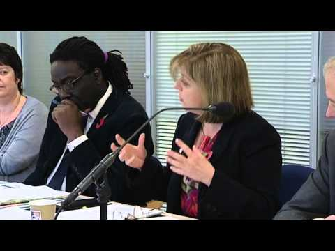 08/11/12 - NHS CB Board Meeting - Part 2 -- NHS CB programme status and Nursing Vision & Strategy