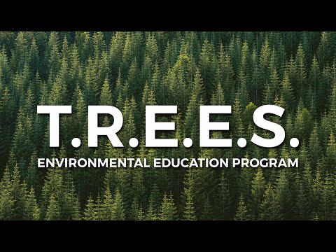 TREES School Program: Environmental Learning Resources | One Tree Planted