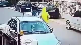Уличная собака спасает девушку из грабителя
