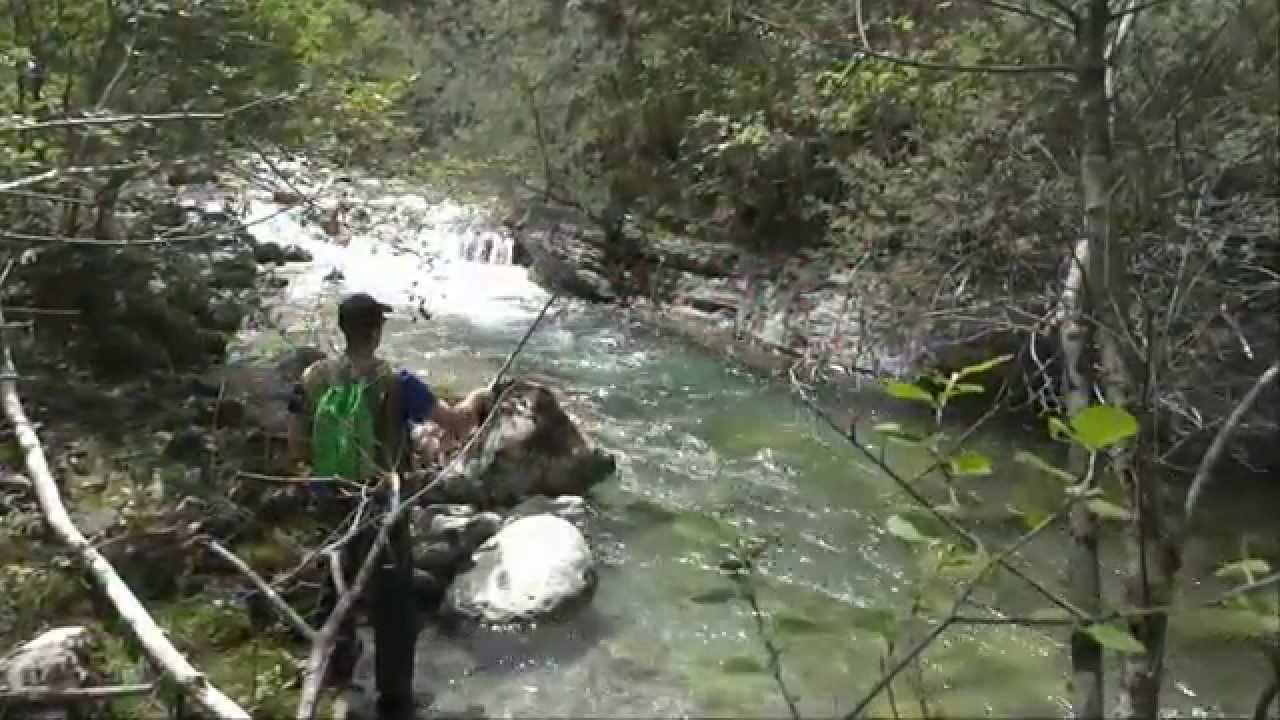 Comme attraper laspe dans la pêche prise à lennemi 2