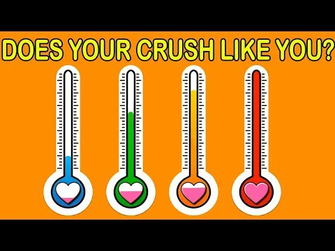How Much Percent Your Crush Likes You Love Personality Test