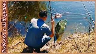 Рыбалка на реке в Беларуси. Фидерная ловля в мае