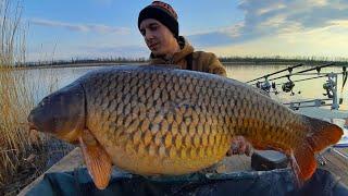 О ТАКИХ РЫБАЛКАХ МЕЧТАЮТ Ловля карпа ранней весной 2021 Лучшая весеняя рыбалка в жизни