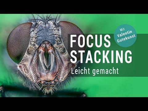 Focus Stacking Leicht Gemacht - Der Optimale Workflow