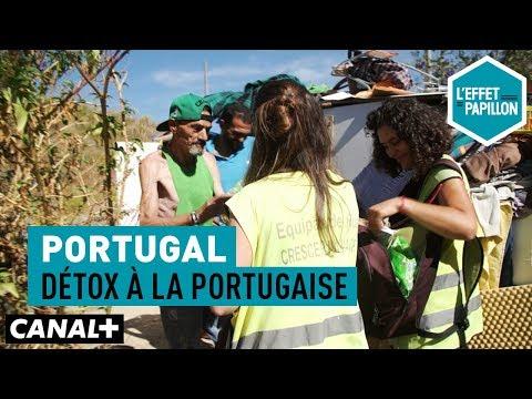 Portugal : Détox à la portugaise - L'Effet Papillon – CANAL+