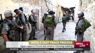 Egypt, France keen to have peace talks resume