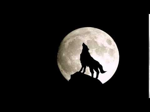 Iced Earth - Wolf