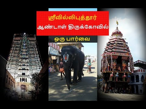 Srivilliputhur Andal temple/ ஸ்ரீவில்லிபுத்தூர் ஆண்டாள் கோவில்/Temple visit/ Srivilliputhur palkova