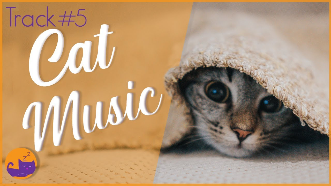 Relax Your Cat Fast - #6 INSTANT Relaxation (Deluxe Album)