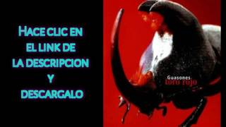 "DESCARGAR ""Toro Rojo"" De GUASONES - [Mega]"