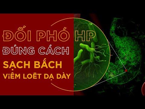 Cách đối phó với vi khuẩn H.Pylori theo chuyên gia tiêu hoá PGS.TS Nguyễn Thị Vân Hồng