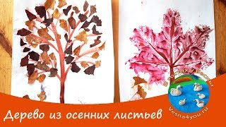 Делаем вместе с ребенком аппликацию из осенних листьев / Осенние поделки для детей