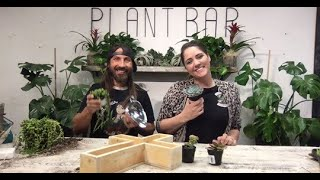 Building With succulents! Plant Bar Live Build! TAKE 2! #togetherathome