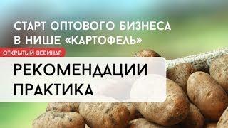 Оптовый бизнес на картофеле: онлайн встреча - рекомендации практика ниши