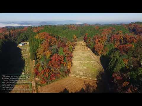 Test flying DJI Inspire1 at Japan Mie prefecture part1