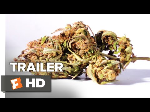The Legend of 420 Trailer #1 | Movieclips Indie