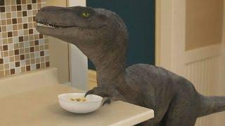 Böses Haustier: Dieser Dinosaurier saut mit dem Frühstücks-Müsli herum