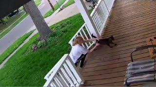 Caught on camera: Cat burglar tries to steal family pet from front porch