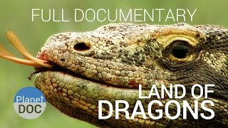 top documentaries