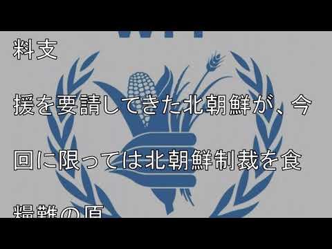 ITP統計で国際機関の詐欺的報告が論破される喜劇が発生 WFPがまともに仕事をしていない