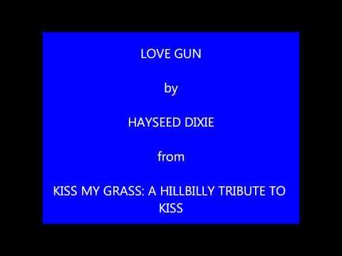 Hayseed Dixie Love Gun