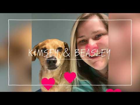 Limestone College Valentine's Day Pets Video 2020