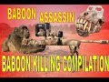 *(GRAPHIC)* The Best Baboon Hunting Video on YouTube (Using a BARRETT Rifle!!)