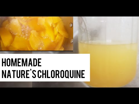 Cool before taking off lid| How To Make Quinine At Home || Hydro chloroquine alternative |