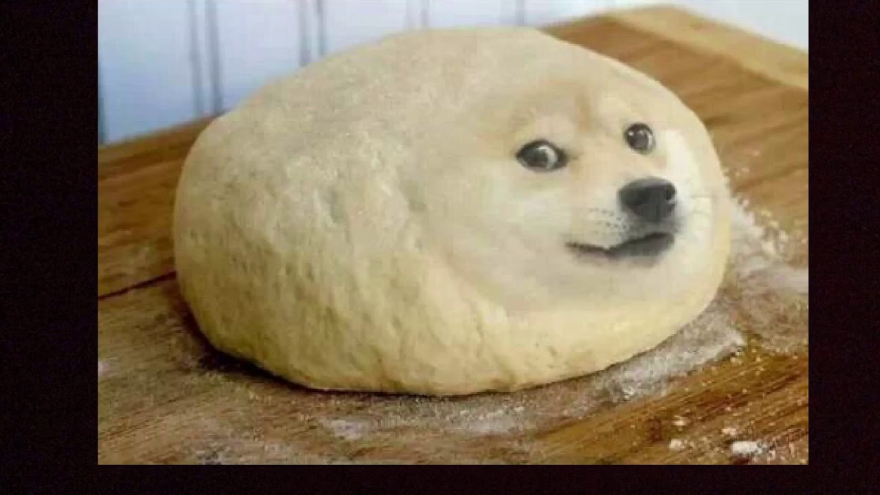 Best Doge Memes(FUNNY)😂😂😂😂😂😂😂 Like and Subscribe - YouTube