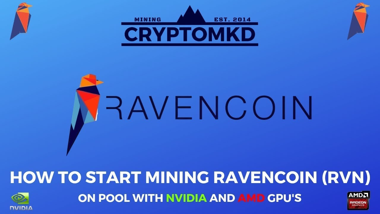 How to start mining Ravencoin (RVN) on pool with NVIDIA and AMD GPU's  UPDATED!!!