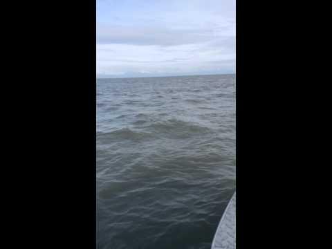 Crossing Cook Inlet